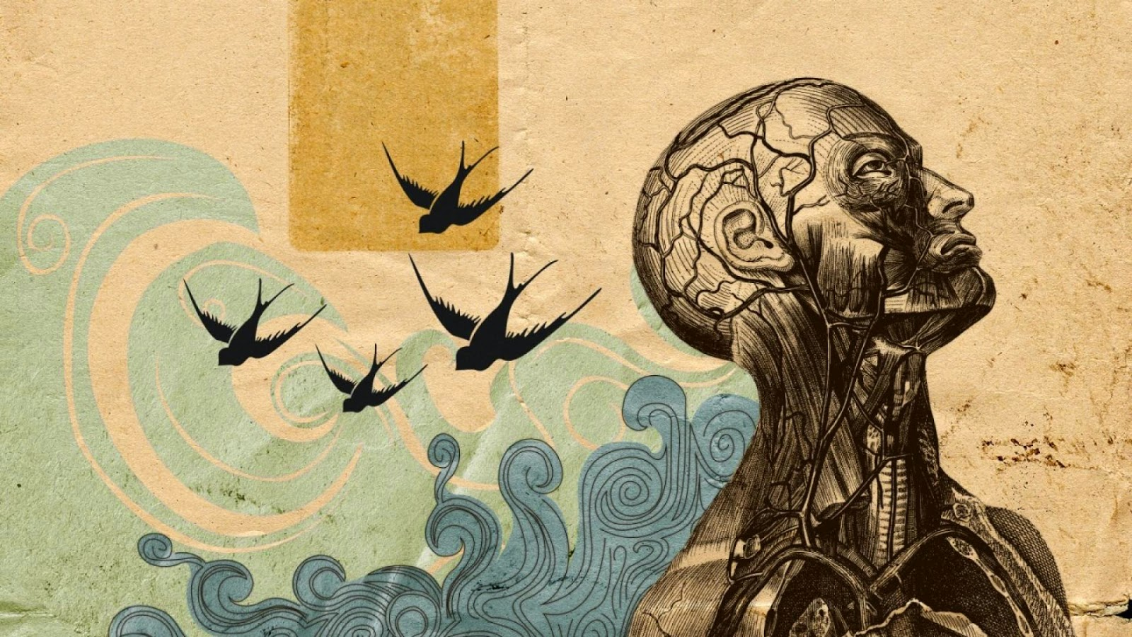 Surrealism-Wallpaper-1440x900-49461